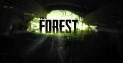 Патч The Forest 0.49b