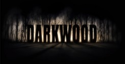 Darkwood (1.0) (2017) PC