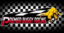 Premier Buggy Racing Tour (2017) PC | Лицензия