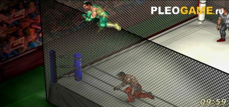 Скриншот №3 Fire Pro Wrestling World (2017) PC - Лицензия